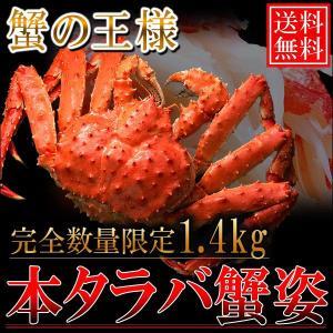 送料無料/本タラバガニ姿1.4kg ボイル冷凍 数量限定|foodwave