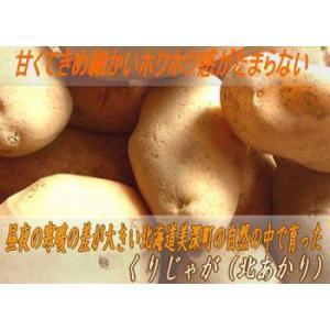 北海道名寄産北あかり 5kg 栗じゃが/新じゃがいも 10月上旬発送   foodwave