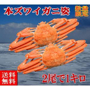 送料無料 ボイル冷凍 本ズワイガニ姿 2尾で1kg 数量限定50セット|foodwave