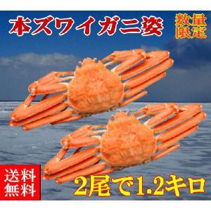 送料無料 ボイル冷凍 本ズワイガニ姿 2尾で1.2kg 数量限定30セット|foodwave