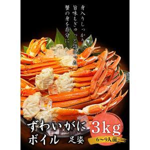 ズワイガニ 足姿 ボイル 3kg かに カニ 蟹 ずわいがに ずわい蟹 冷凍 ギフト プレゼント 御歳暮 内祝い に最適|foodyamadaya