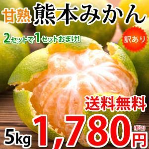 みかん 5kg 熊本みかん 訳あり 送料無料 2S〜3L 熊本県産 極早生みかん 訳ありみかん 蜜柑 ミカン