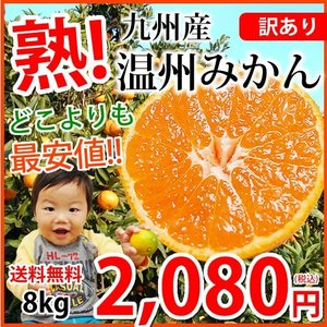 1kgあたり198円!送料無料 どこよりも最安値挑戦!訳あり...
