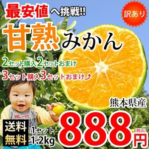 みかん 訳あり 送料無料 甘熟 訳ありみかん 1.2kg 2S〜L 熊本県産 2セットで2セット 3セットで3セットおまけ ポイント消化 ポッキリ お取り寄せ 蜜柑 ミカン