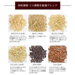 ポイント消化 雑穀米 送料無料 十八雑穀米 お...の詳細画像4