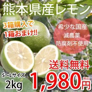 レモン 国産レモン 送料無料 2kg S〜L 3箱購入で1箱おまけ 熊本県産 減農薬 防腐剤ワックス不使用 れもん グリーンレモン 国産