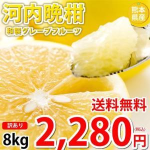 河内晩柑  文旦 訳あり ジューシーみかん 送料無料 8kg...