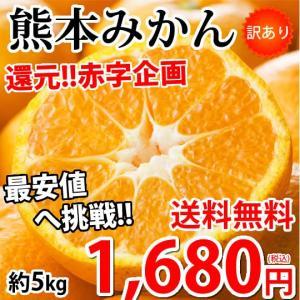 みかん 5kg 送料無料 訳あり 箱込(内容量4kg+補償分500g) 熊本みかん  蜜柑 ミカンの画像