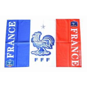 フランス代表(E) フラッグ(旗) 〔fl141〕|footballfan