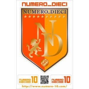 NUMERO_DIECI クラシックエンブレムステッカー【清水カラー】|footballfan