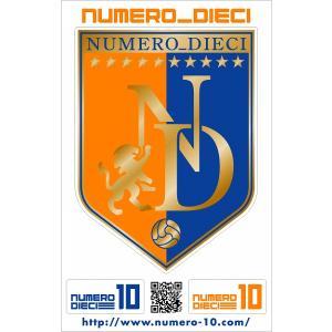 NUMERO_DIECI クラシックエンブレムステッカー【新潟カラー】|footballfan