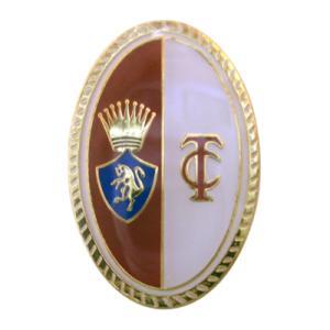 トリノ ピンバッジ|footballfan