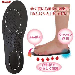 カサハラ式 NEWO脚インソール(足つぼ反射機能付き) AKG-002
