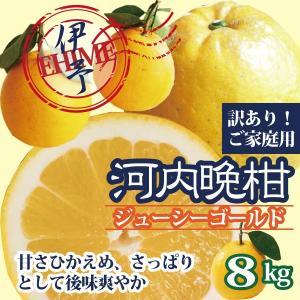 河内晩柑 美生柑 愛媛産 シューシーゴールド 訳あり ご家庭用 送料無料 約8kg