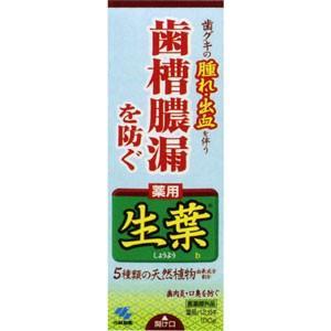 薬用歯みがき生葉100g