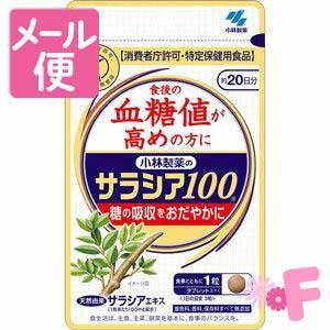 [ネコポスで送料160円]小林製薬のサラシア1...の関連商品6