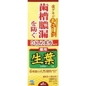 薬用歯みがき ひきしめ生葉100g