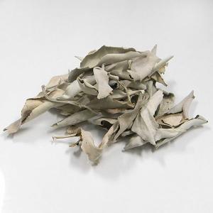 浄化用ホワイトセージ(リーフ)10g (郵便でのお届け)(代引き/日付指定不可) forestblue
