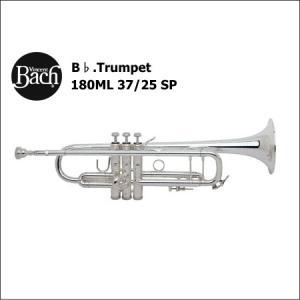 バック<Bach> トランペット Stradivarius 180ML 37/25 SP (銀メッキ仕上げ)|forestmusic