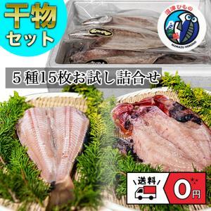 干物 詰め合わせ 5種類 15枚 沼津 直送 真アジ かます 縞ほっけ 金目鯛 さんま