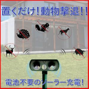 猫よけ 超音波 対策 ソーラー式 動物撃退器 猫除け センサー ライト 猫よけ対策  ネコよけ グッズ ソーラー 充電 カラスよけ 害獣|four-piece