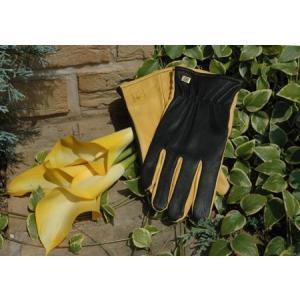 【アウトレット】ドライタッチ 英国ガーデン手袋 ジャイコ JAYCOゴールドリーフ【送料別】|fourseasons