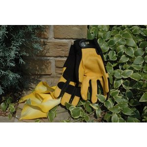 ソフトタッチ 英国ガーデン手袋 ジャイコ JAYCOゴールドリーフ【送料別】|fourseasons