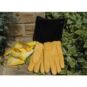 タフタッチ 英国ガーデン手袋 ジャイコ JAYCOゴールドリーフ【送料別】|fourseasons