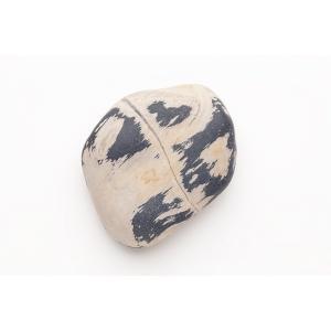 珪化木(津軽瑪瑙) ルース Petrified wood (Tsugaru menoe) 63mm (#101072)|fourstones