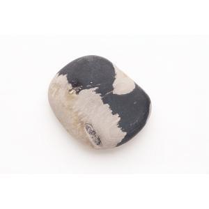 珪化木(津軽瑪瑙) ルース Petrified wood (Tsugaru menoe) 54mm (#101073)|fourstones