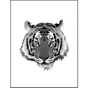 【虎・トラ】ポストカード