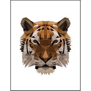 【虎・タイガー】ポストカード