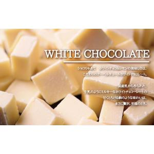 ショコりゃあて ホワイトチョコ&レモン ガトーショコラ スイーツ ホワイトチョコレート 名古屋 常温|fraicheur|03