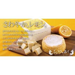 ショコりゃあて ホワイトチョコ&レモン ガトーショコラ スイーツ ホワイトチョコレート 名古屋 常温|fraicheur|05