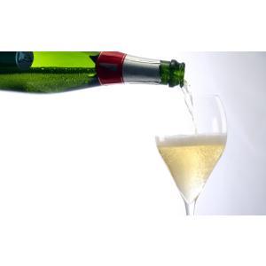 イタリア最高級スパークリングワイン フランチャコルタ ブリュット / ブレダソーレ 750ml franciacorta 04