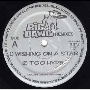 製造国 : US  リリース年 : 1998  レーベル : BIG DAWG  品番 : BDR-...