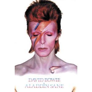 ポスター David Bowie Aladdin Sane アルバム ロックポスター デヴィッド・ボウイ 61センチX91センチ|free-style