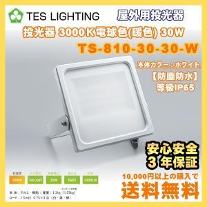 LED ライト 照明 屋外用投光器 防水 30Wタイプ 3000K 3300Lm ホワイト テスライティング TS-810-30-30-W freedom-telwork