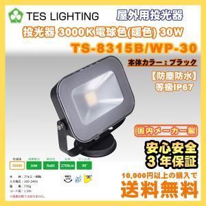LED ライト 照明 屋外用投光器 防水 30Wタイプ 3000K 2700lm ブラック テスライティング TS-8315B/WP-30 freedom-telwork