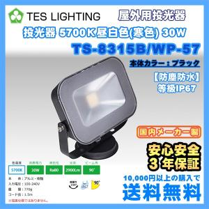 LED ライト 照明 屋外用投光器 防水 30Wタイプ 5700K 2900lm ブラック テスライティング TS-8315B/WP-57 freedom-telwork