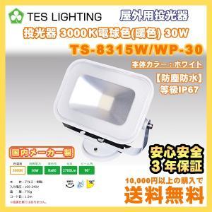LED ライト 照明 屋外用投光器 防水 30Wタイプ 3000K 2700lm ホワイト テスライティング TS-8315W/WP-30 freedom-telwork