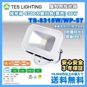 LED ライト 照明 屋外用投光器 防水 30Wタイプ 5700K 2900lm ホワイト テスライティング TS-8315W/WP-57 freedom-telwork