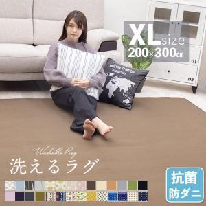 ラグ カーペット リビングマット 洗えるラグ 200×300cm 秋 冬 ホットカーペット対応 暖