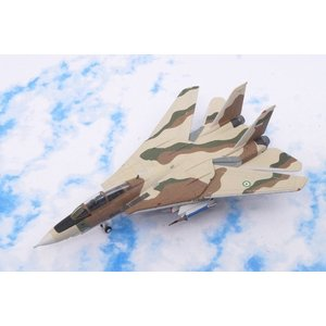 1/200 F-14A アメリカ海軍 イラン空軍迷彩 ポイントマグー基地 [6528] ホーガン/中古|freestyle-hobby