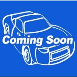 新品 C4982-98EF ホットウィール ベーシックカー 2020 Fアソート