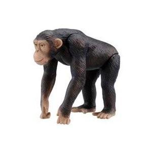アニア AS-14 チンパンジー タカラトミー/新品|freestyle-hobby