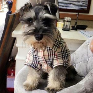 人気 ペット服 小型犬用 シャツ 洋服 ドッグウェア チェック柄 パーカー お洒落 パパラッジ衫 夏秋 暖かい 防寒 コート Tシャツ ペット用品|freshfashion