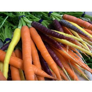フレッシュグループ淡路島の彩りカラフルスティックニンジン 3色食べ比べ10パックセット