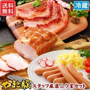 スタッフが選んだ三ツ星セット NS-K | [冷蔵] 送料無料 ソーセージ 詰め合わせ ウィンナー やまと豚 ギフト お取り寄せグルメ 肉 ギフトセット 食品 お取り寄せ|frieden-shop
