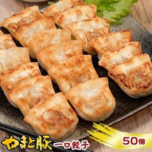 やまと豚一口餃子450g(50個)  やまと豚 豚肉 やまと 豚 お取り寄せグルメ お取り寄せ グルメ 餃子 ギョーザ ギョウザ 一口餃子 食品 食べ物 frieden-shop